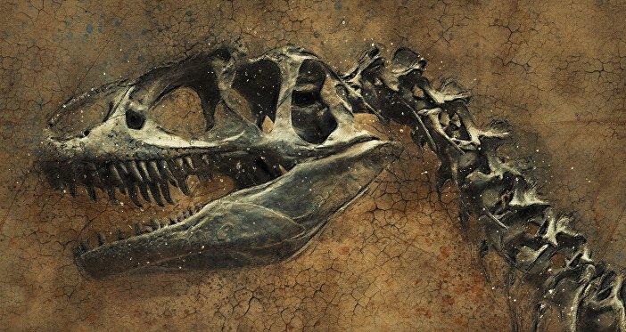 دایناسور 70 میلیون ساله