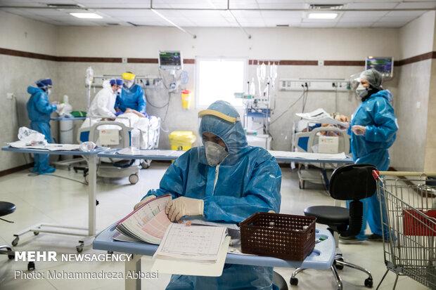 کرونا ویروس دکتری